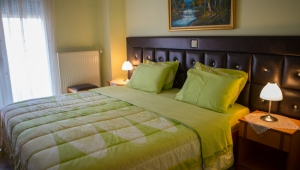 Standard Double Room, Location, Asteras Hotel, Loutra Pozar, hotels, rooms, suites, guesthouses, accommodation, Loutraki, Aridaia